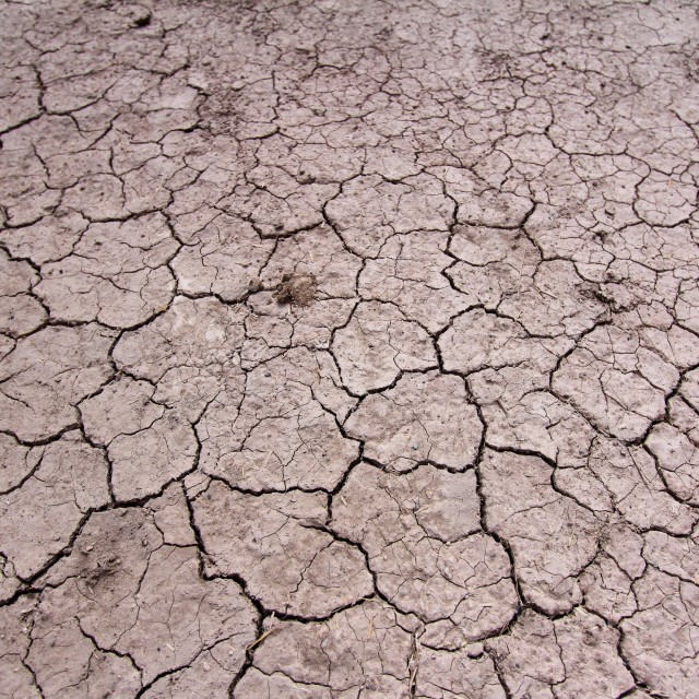 """Drought"" stock image"