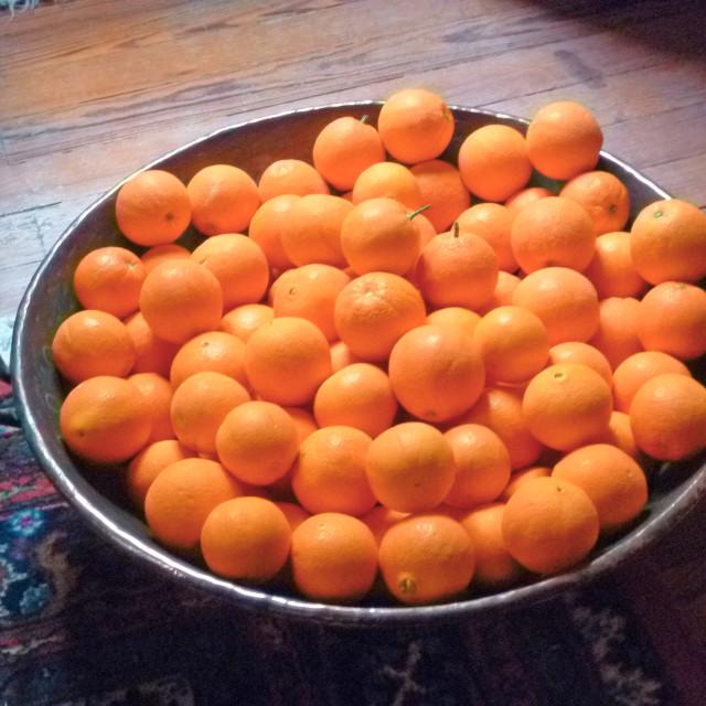 """Oranges"" stock image"