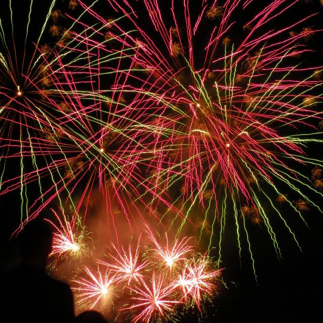 """""""Enjoying Fireworks"""" stock image"""