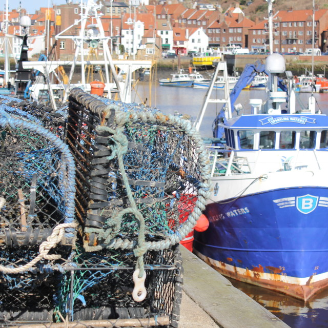 """""""Lobster Pots at Whitby"""" stock image"""