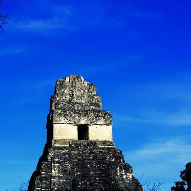 """Tikal"" stock image"