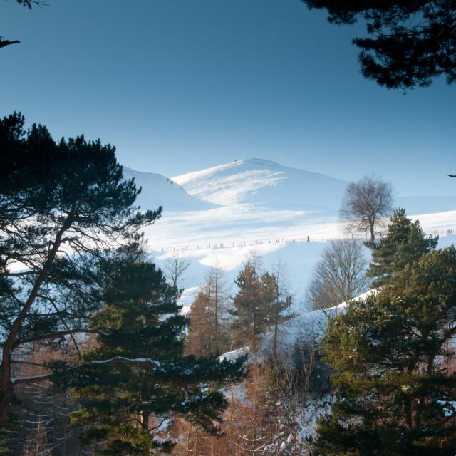 """""""The Pentlands in Winter"""" stock image"""
