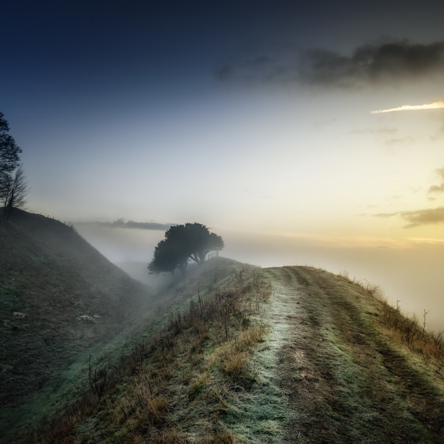 """Foggy Morning"" stock image"