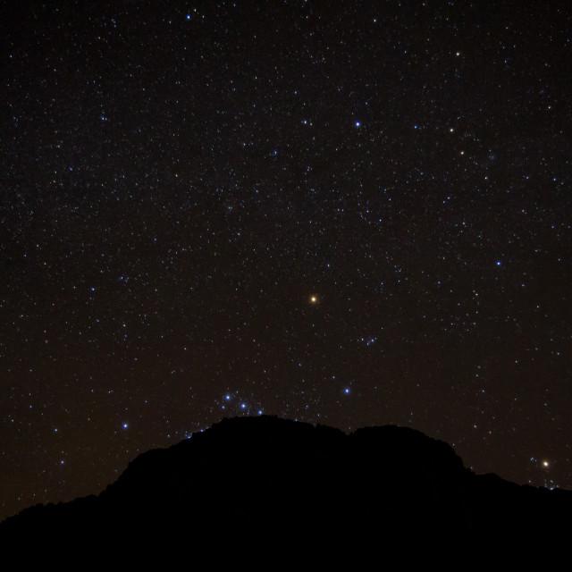 """""""Stars in the desert"""" stock image"""