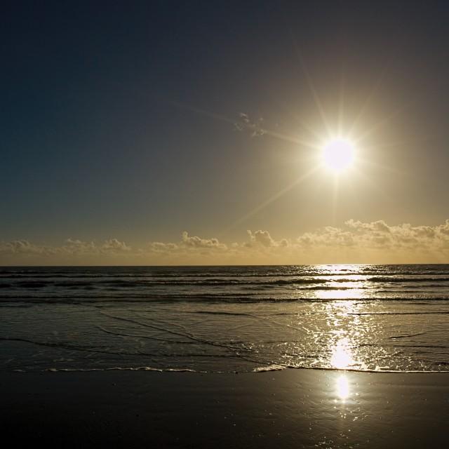 """""""Shoreline sunshine"""" stock image"""