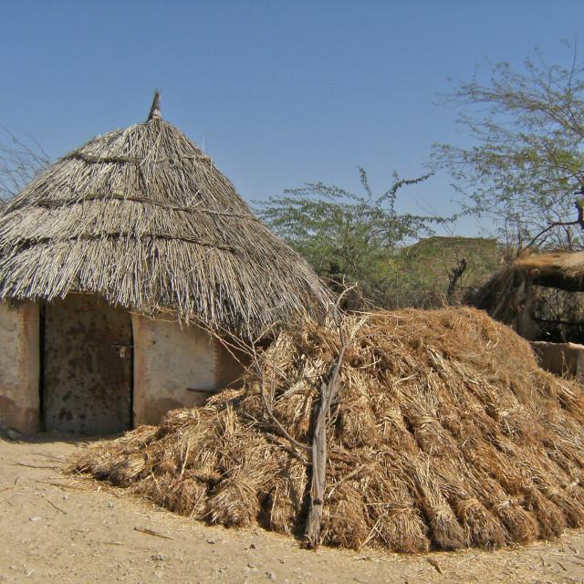 """Shepherds village near Jodhpur, India"" stock image"