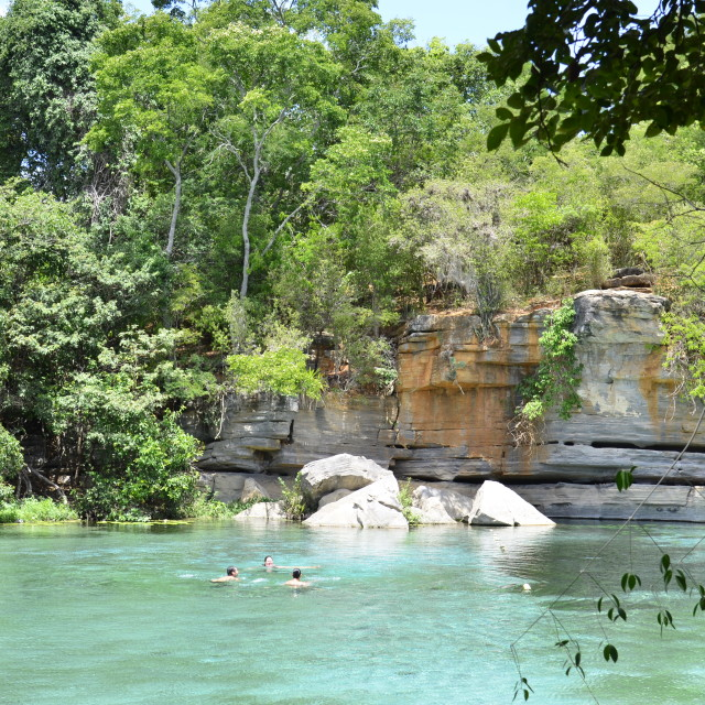 """Swimming in Lake Pratinha, Chapada Diamantina"" stock image"