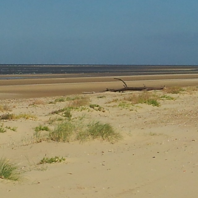 """The Beach at Holkham"" stock image"