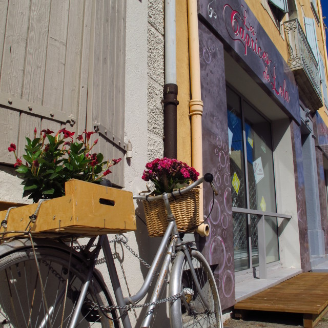 """Petal pedaler"" stock image"