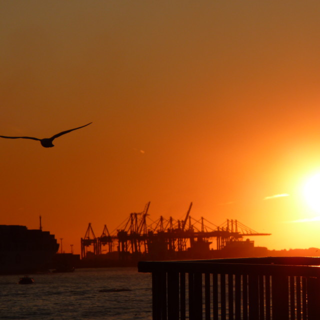 """Sunset at Hamburg Habour"" stock image"