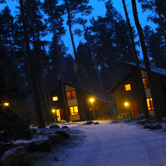 """Cabins in Snowy Forest"" stock image"