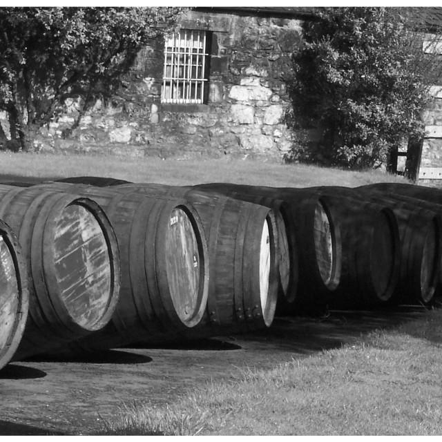 """Whisky barrels"" stock image"