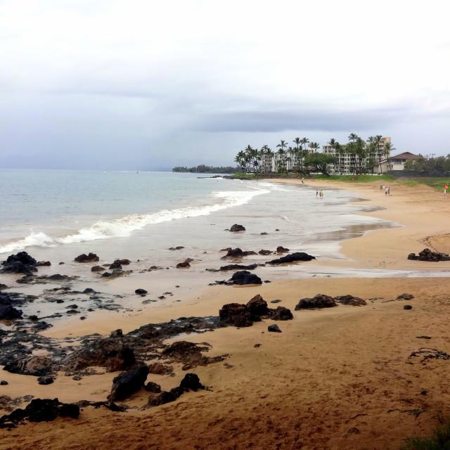"""Beautiful Maui"" stock image"