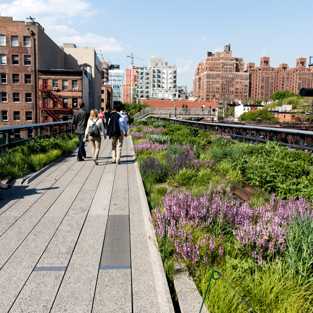 """Walking the High Line"" stock image"
