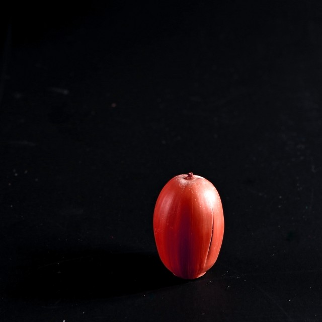 """Red acorn"" stock image"