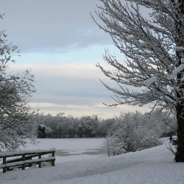 """""""Snow quiet"""" stock image"""