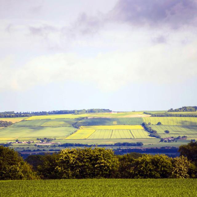 """Green Fields"" stock image"