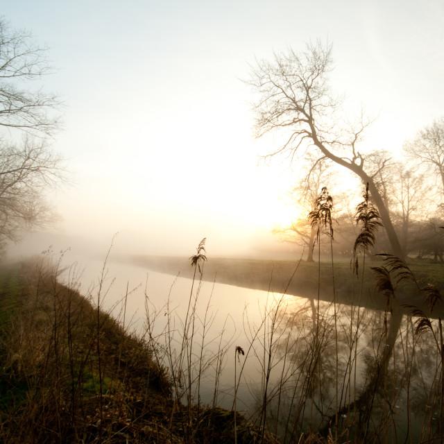 """Misty morning 01"" stock image"