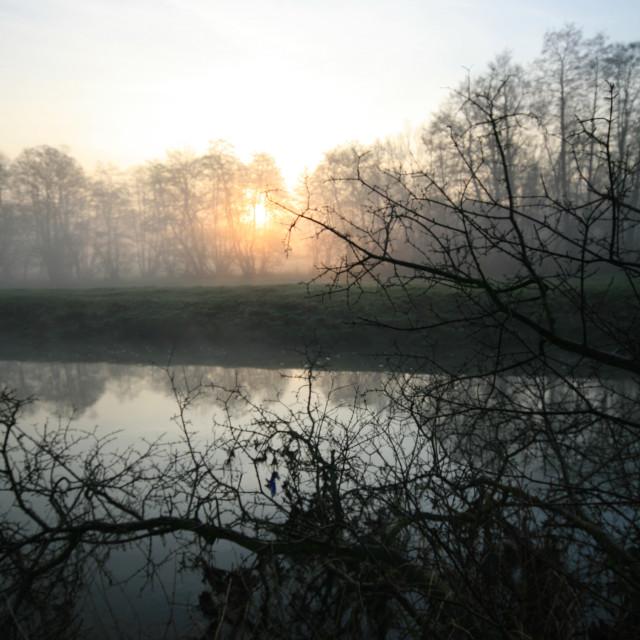 """Misty morning 04"" stock image"
