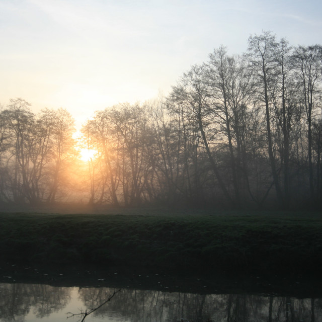 """Misty morning 05"" stock image"