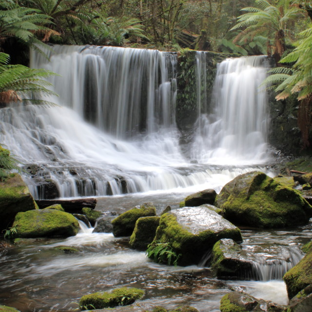 """Waterfall in Mount Field National Park Tasmania"" stock image"