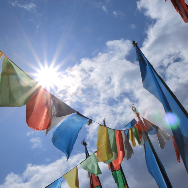 """Tibetan flag"" stock image"