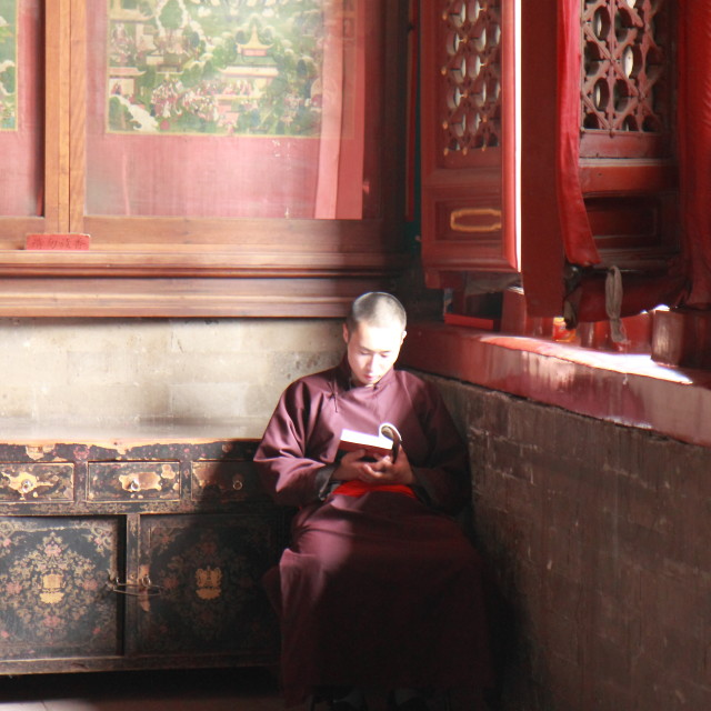 """Chinese Monk"" stock image"