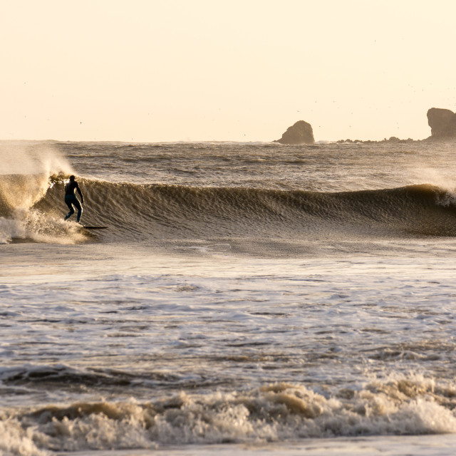 """""""Afternoon Surfer"""" stock image"""
