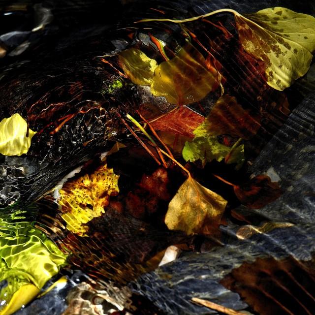 """Waterworld"" stock image"