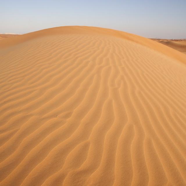 """""""Dubai's Desert"""" stock image"""