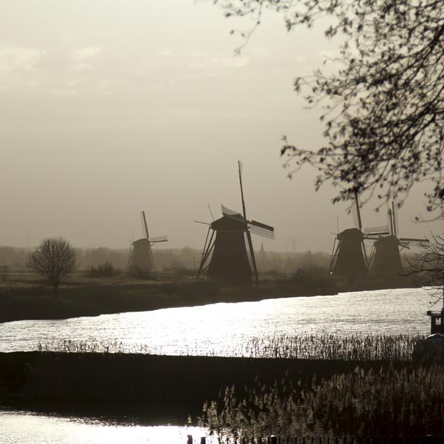 """Kinderdijk early morning"" stock image"