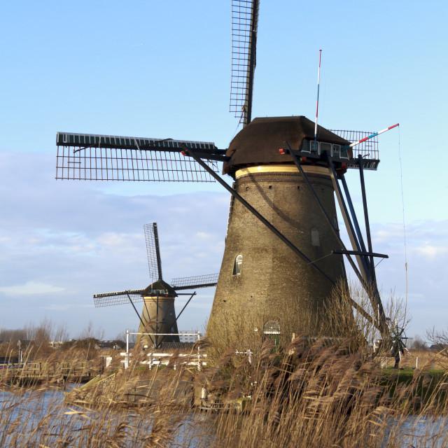 """Two Kinderdijk windmills"" stock image"
