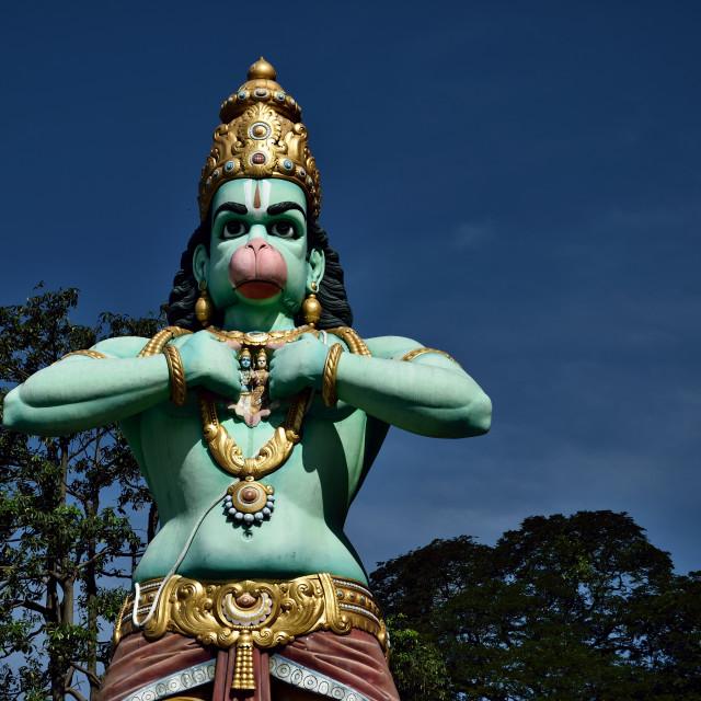 """Hanuman statue"" stock image"