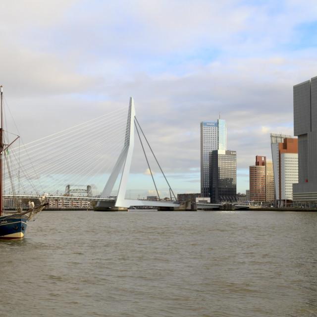 """Erasmus bridge and The Rotterdam"" stock image"