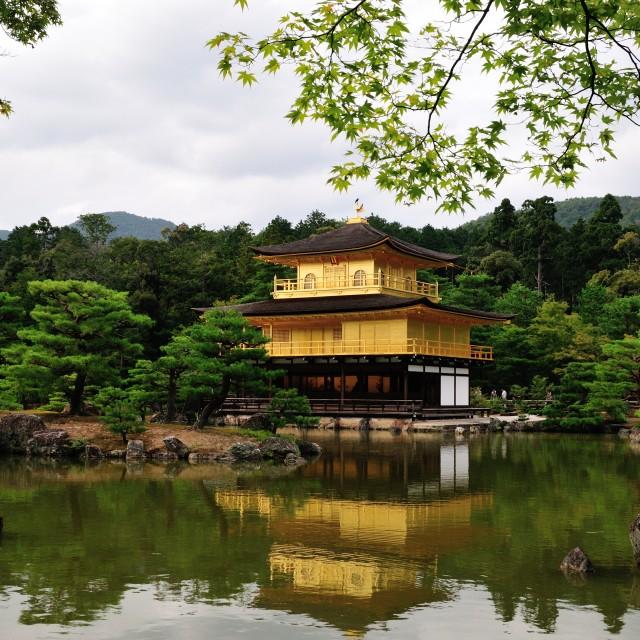 """Golden Temple (金閣寺)"" stock image"