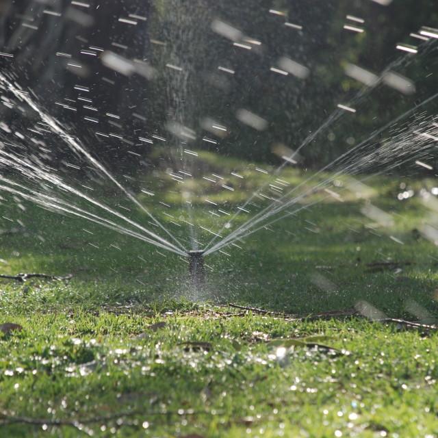 """""""Lawn Sprinkler"""" stock image"""