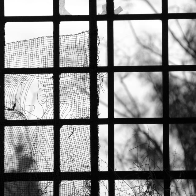 """factory window"" stock image"