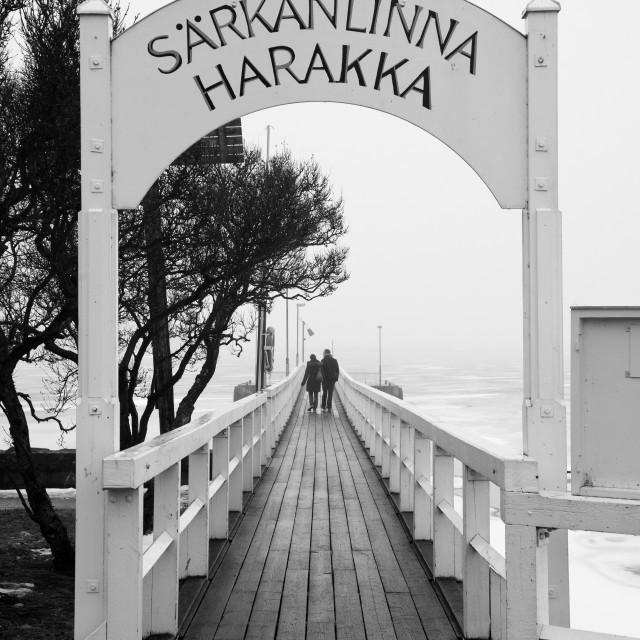 """""""Bridge to ice sea"""" stock image"""