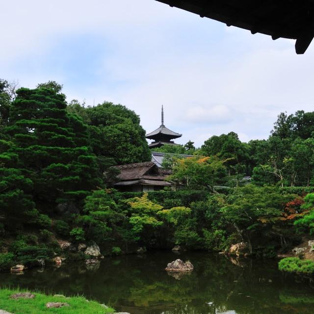 """Kyoto Garden Pagoda"" stock image"