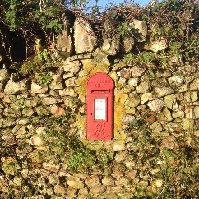 """""""Devon postbox"""" stock image"""