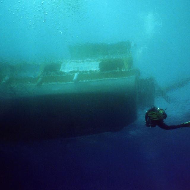 """Diver returning"" stock image"