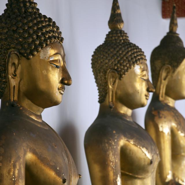 """Golden Buddhas"" stock image"