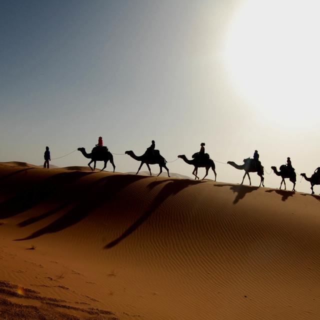 """Desert Troopers"" stock image"