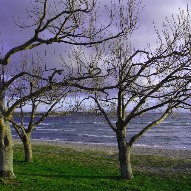 """Lake Taupo"" stock image"