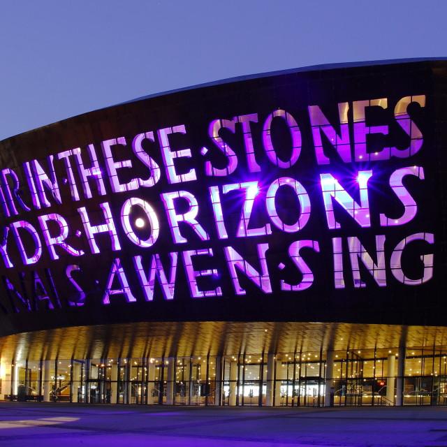 """""""Cardiff Millenium Centre"""" stock image"""