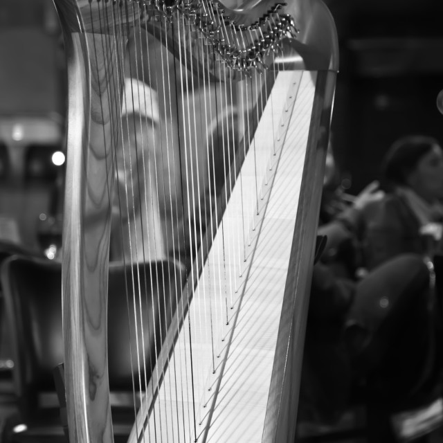 """Urban Harp"" stock image"