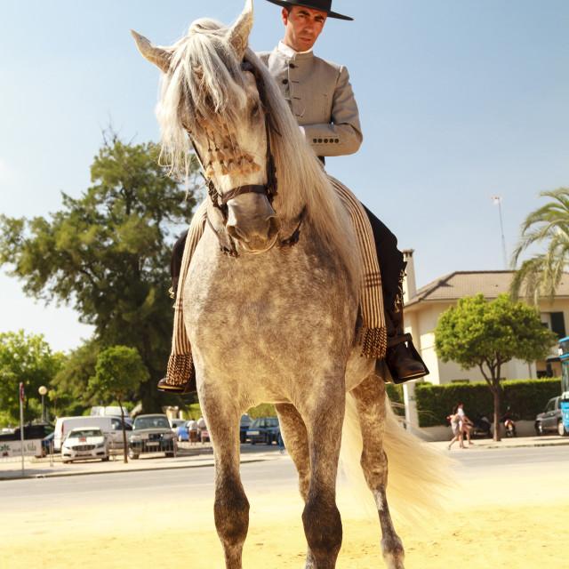 """""""Thinking Horse"""" stock image"""