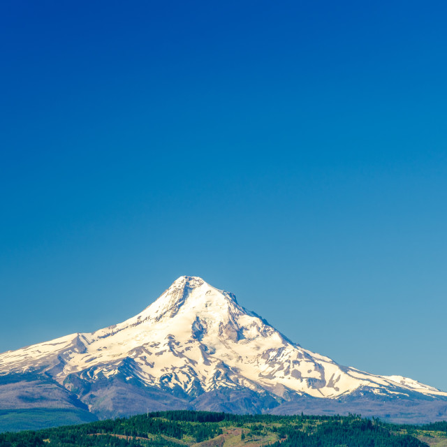 """""""Mt. Hood and Blue Sky"""" stock image"""