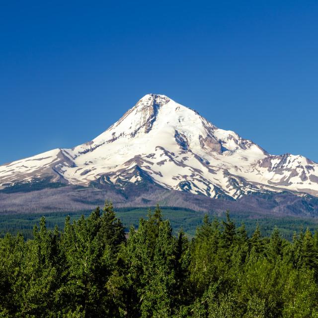 """""""Majestic Mt. Hood"""" stock image"""