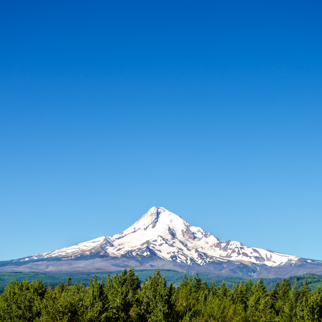 """Beautiful Mt. Hood"" stock image"